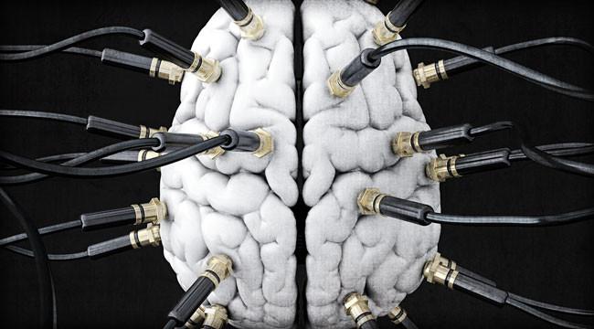 مغز بردگان عصر دیجیتال